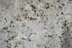Grunge Cement Wall Stock Photos