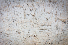 Grunge cement wall with dusty dirty texture Stock Photos