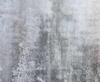 Grunge cement wall. Or texture background Royalty Free Stock Photos