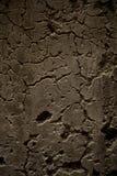 Grunge cementvägg Arkivfoto