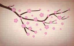 Grunge Cherry blossom. Illustration of a grunge Cherry blossom abstract background vector illustration