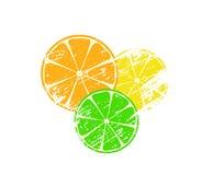 Grunge citruses. Grunge orange, lime and lemon Stock Photo