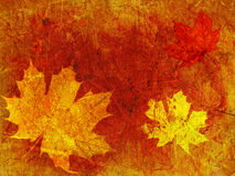 Grunge colorful autumn background Stock Photo