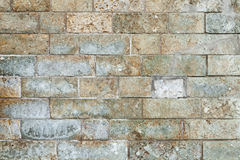 Grunge colorful brick wall background texture Royalty Free Stock Photo