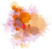 Grunge colorful paint splashes. On whiite Royalty Free Stock Photo