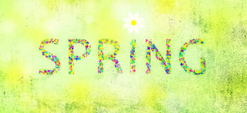 Grunge colorful spring word with flower Royalty Free Stock Photo
