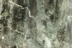 Grunge concrete background Royalty Free Stock Photos