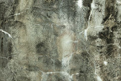 Grunge concrete background Stock Photography