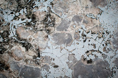 Grunge concrete wall background. Or texture Royalty Free Stock Images
