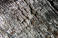 Grunge contrast rough wood texture. Is close stock photo