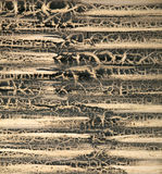 Grunge corrugation abstract Stock Photography