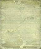 Grunge cracked bamboo background with frame Stock Photography