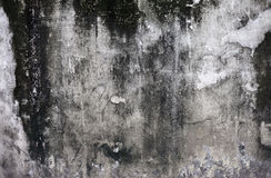 Grunge cracked concrete wall Royalty Free Stock Image