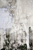 Grunge Cracked Concrete Wall Royalty Free Stock Photos