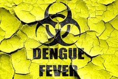 Grunge cracked Dengue fever concept background Royalty Free Stock Photography