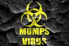 Grunge cracked Mumps virus concept background Royalty Free Stock Photo