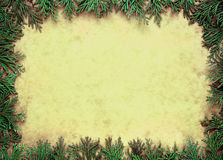 Grunge cypress border Stock Photos
