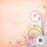 Grunge daisy textured vector background Royalty Free Stock Image