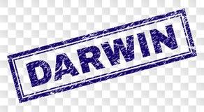 Grunge DARWIN prostokąta znaczek ilustracji