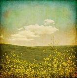 Grunge de fleur de cru Image stock