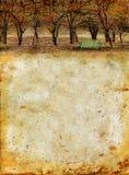 grunge de forêt de banc de fond d'automne illustration libre de droits