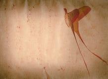 Grunge de la polilla de la mariposa de la cola larga viejo Fotografía de archivo libre de regalías