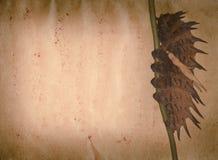 Grunge de tracteur à chenilles de guindineau vieille Image libre de droits