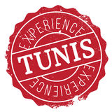 Grunge del caucho del sello de Túnez Imagen de archivo
