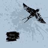 Grunge design with blots silhouette of animal and latin aphorism. Royalty Free Stock Photography