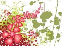 Grunge do redemoinho do hibiscus Fotos de Stock Royalty Free