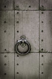 Grunge door Stock Images