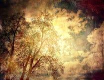 Grunge drzew tło Obrazy Royalty Free