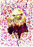 Grunge Eagle Sketch Royalty Free Stock Image