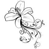 Grunge elegance ink tattoo sketch flower. Vector illustration Royalty Free Stock Image