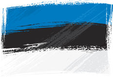 Grunge Estonia flag Stock Image