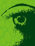 Grunge Eyeball. And Brow on a Green Background Royalty Free Stock Photo