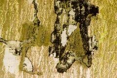 grunge för 22 bakgrund Arkivbilder