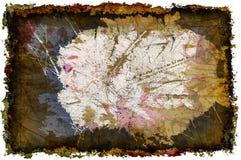 grunge för 3 D invaginate wallpaperen Arkivbild