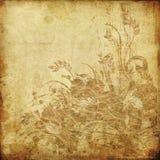 grunge för konstbakgrundsdiagram Fotografering för Bildbyråer