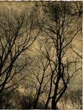 grunge för konstbakgrundskort Fotografering för Bildbyråer