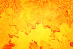 Grunge fall background with old paper texture Stock Photography