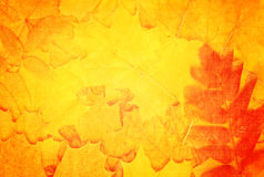 Grunge fall background with old paper texture Royalty Free Stock Photography