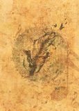 Grunge feather with birds royalty free illustration