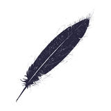 Grunge feather pen Royalty Free Stock Image