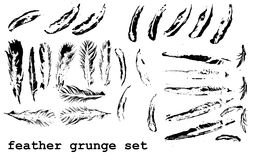 Grunge feather set Stock Photo
