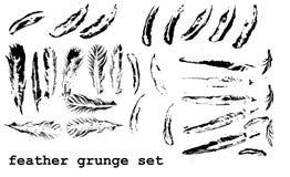 Grunge feather set Stock Photo