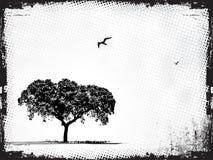 Grunge Feld mit Baum Lizenzfreie Stockbilder