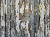 Grunge Fence Garden Landscape. Stock Image