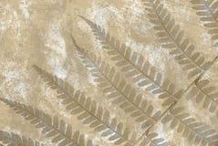 Grunge fern background Stock Image