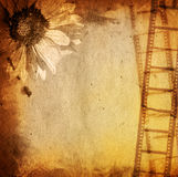 Grunge film strip backgrounds. Great film strip for textures and backgrounds-with space for your text and image Stock Photography